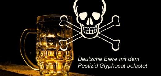 bier-glyp