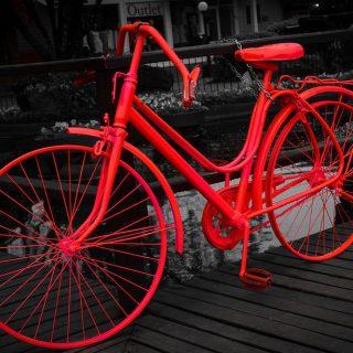 bike-961391_960_720