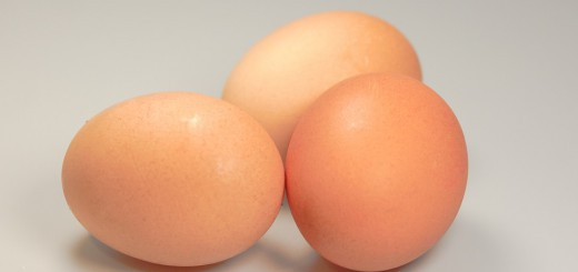 eggs-541763_960_720