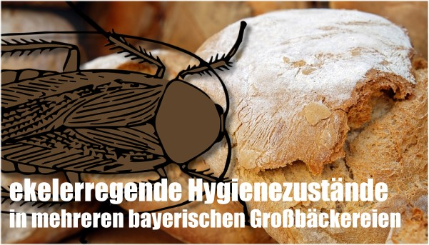 Teils ekelerregende Hygienezustände in mehreren bayerischen Großbäckereien